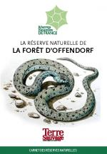 Foret_Offendorf