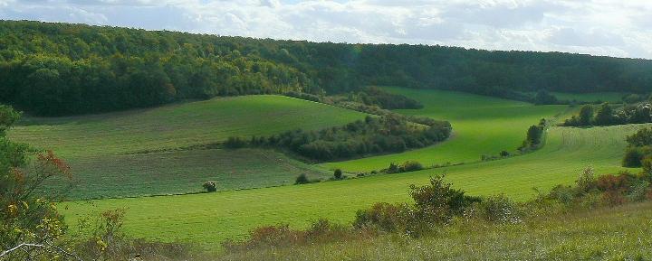 Vall e des cailles reserves naturelles de france for Bureau vallee dreux