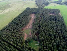 Vue aérienne de la Montagne du Mont et des deux zones de coupes  - © P. Tournebise