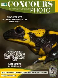 Affiche 2 - Concours photo Festival de Ménigoute - 2018
