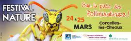 Festival nature sur la piste des pollinisateurs
