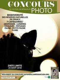 Affiche 1 - Concours photo Festival de Ménigoute - 2018
