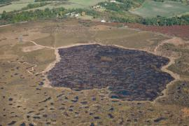 Vue aérienne du brûlis 2017 © RNN Pinail - Y. Sellier