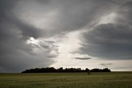 La colline du Koppenackberg - © L. Wen / Coeurs de nature / SIPA