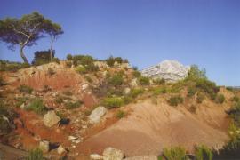 Le gisement de Roques-Hautes - © N. Bertucceli