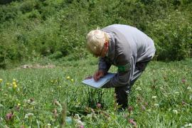 Relevé de végétation - © RN Frankenthal Missheimle