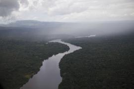 Dans le parc naturel amazonien - © O. Jobard / Coeurs de Nature / SIPA