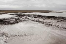 La Sèvre Niortaise depuis le port du Pavé - © T. Trossat / Coeurs de Nature / SIPA