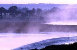 La rivière de Noyalo - © R.-P. Bolan / Bretagne Vivante