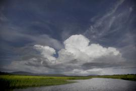 Vue des marais - © M. Cristofani / Coeurs de nature / SIPA