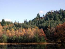 L'étang de Hanau - © P.-M. Aubertel
