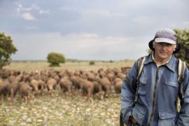 Berger et son troupeau de moutons - © M. Cristofani / Coeurs de nature / SIPA