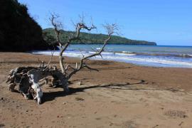 Plage à Mayotte - © C. Pons / Coeurs de Nature / SIPA