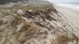 Dune blanche en évolution libre - © RNNDMH