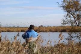 Observation dans la réserve naturelle - © Marais du Vigueirat