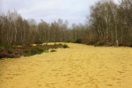 Dunes éoliennes datant d'environ 5000 ans - © S. Petit