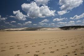 Le banc et la dune du Pilat - © F. Lepage / Coeurs de Nature / SIPA