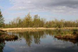 Vue des marais - © C.A. Saint-Quentin