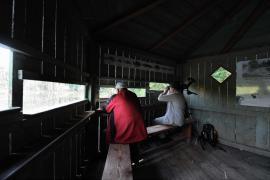 Observatoire dans la réserve - © J. Witt / Coeurs de nature / SIPA