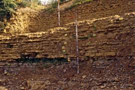 Roches calcaires du stratotype Toarcien - © M. Jonin