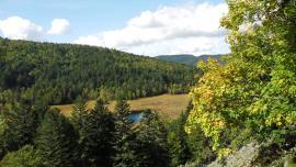 Vue de la tourbière en automne - © RNN Tourbière de Machais