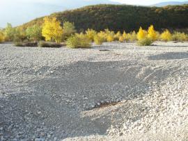 Le Drac sec avant la confluence avec la Romanche - © RNR Isles du Drac
