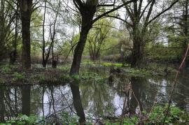 Le bassin de la Bièvre - © Natureparif