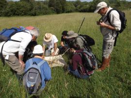 Sortie avec un groupe de naturalistes - S.Recoppe
