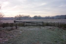 Site à l'entrée de l'hiver - © PNR Scarpe-Escaut