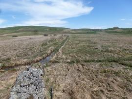 Prairies humides formant le secteur sud de la tourbière - © Luc Belenguier/SMPNRVA
