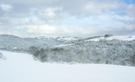 L'hiver dans la RNRGL ©Frapna Loire