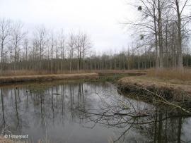 Vue du site - © Natureparif
