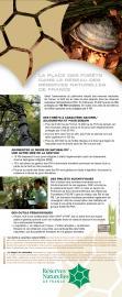La place des forêts dans le réseau des réserves naturelles de France